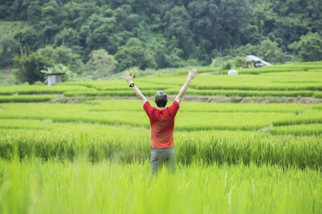 Man standing with arms raised in green field
