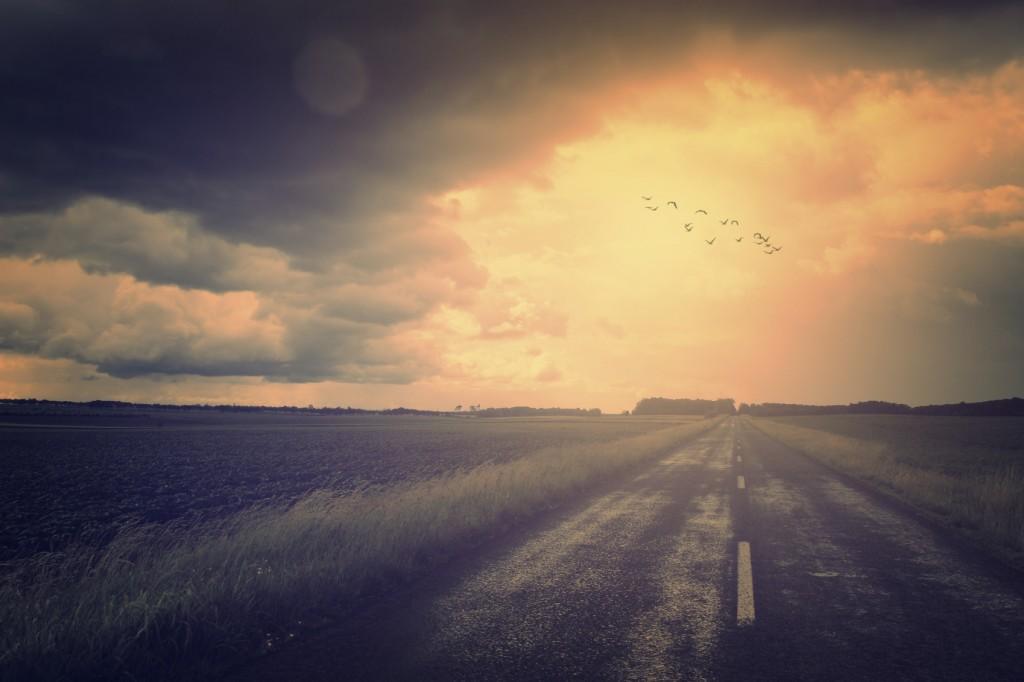 Vintage photo of asphalt road and flying birds over it