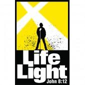 LifeLight2013