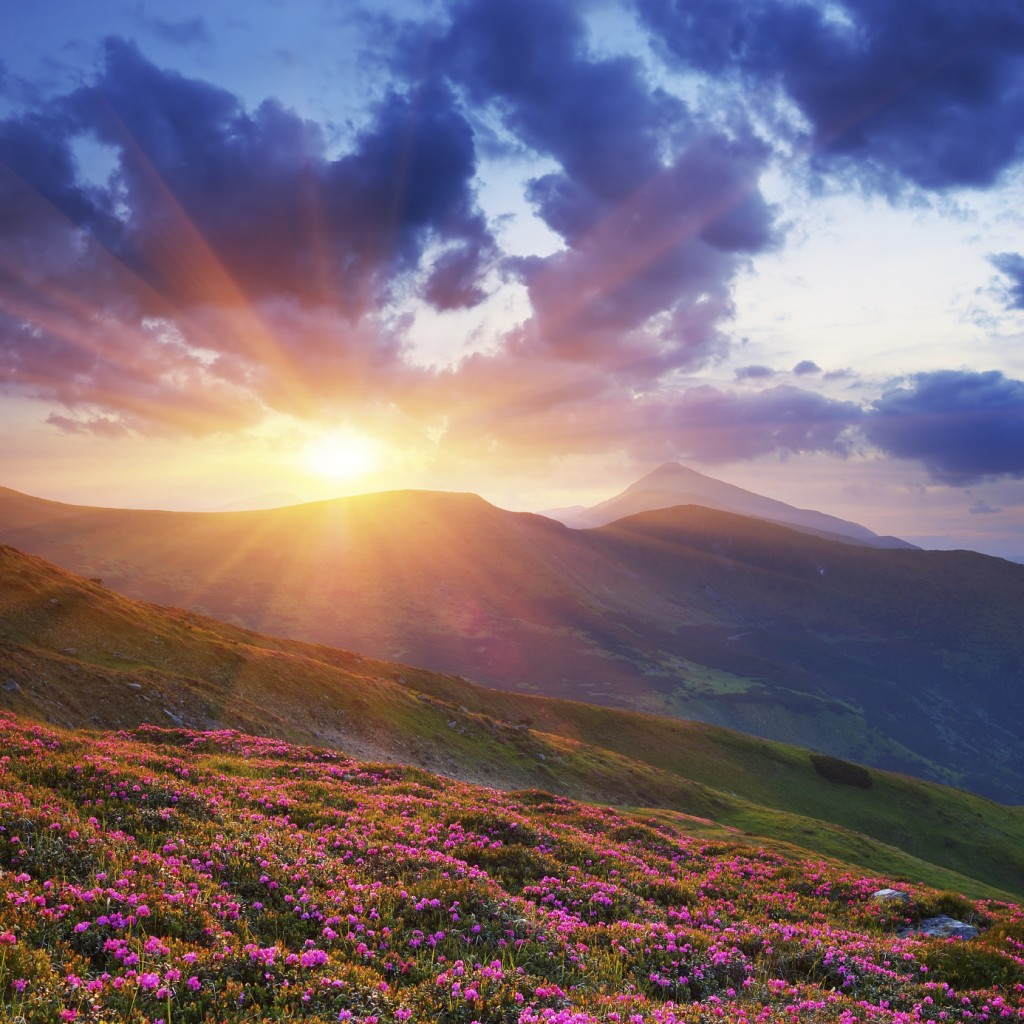 Summer landscape in mountains with the sun