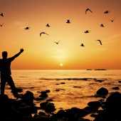 Man standing on the beach arms raised birds flying around