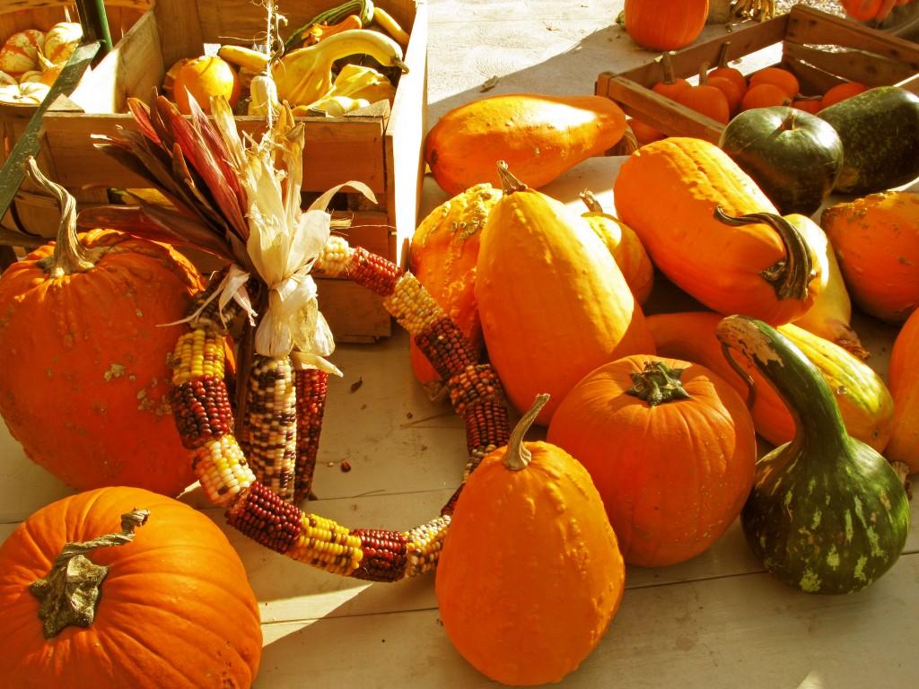 squash pumpkins corn