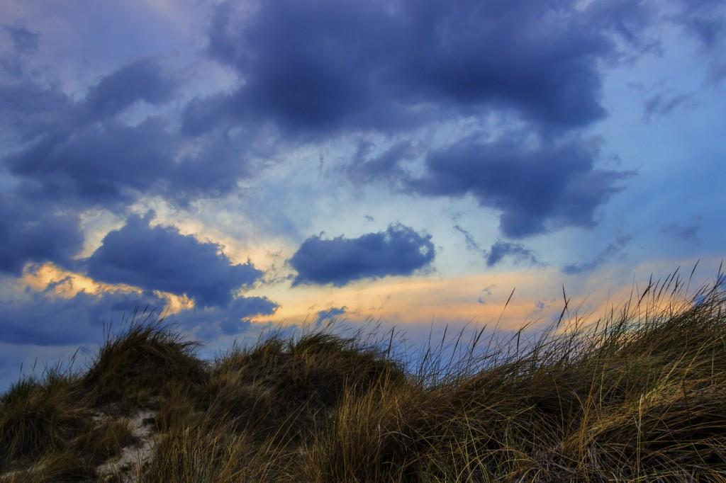Sormy sky over tall grass field