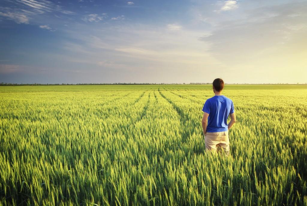 Man in meadow green meadow.