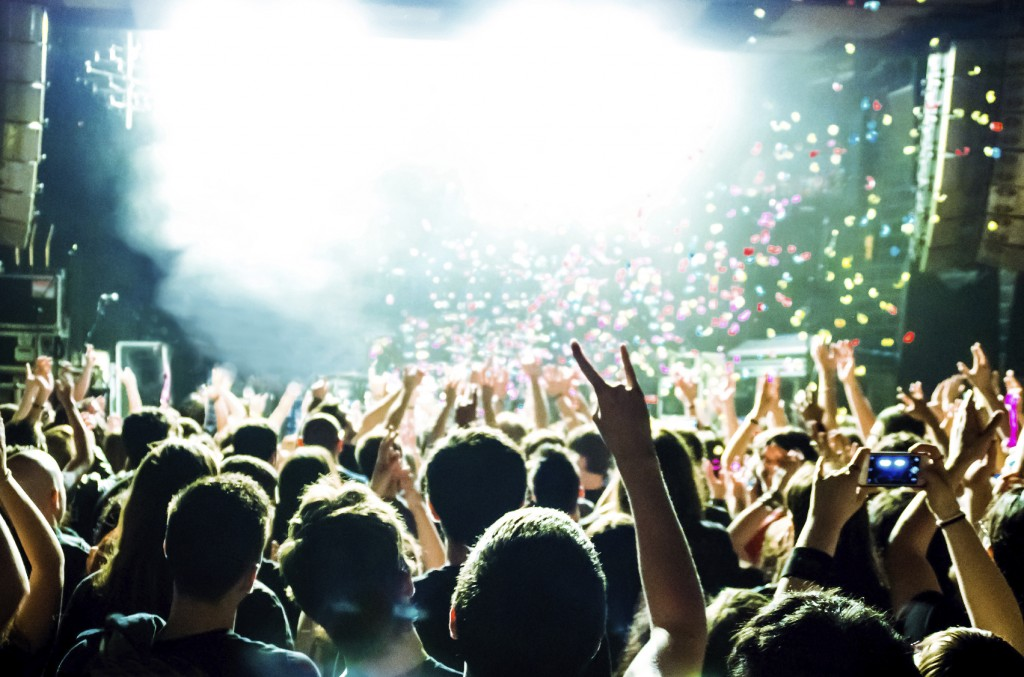 Crowd at a rock concert
