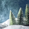 Decorative snow and Christmas trees with blue background