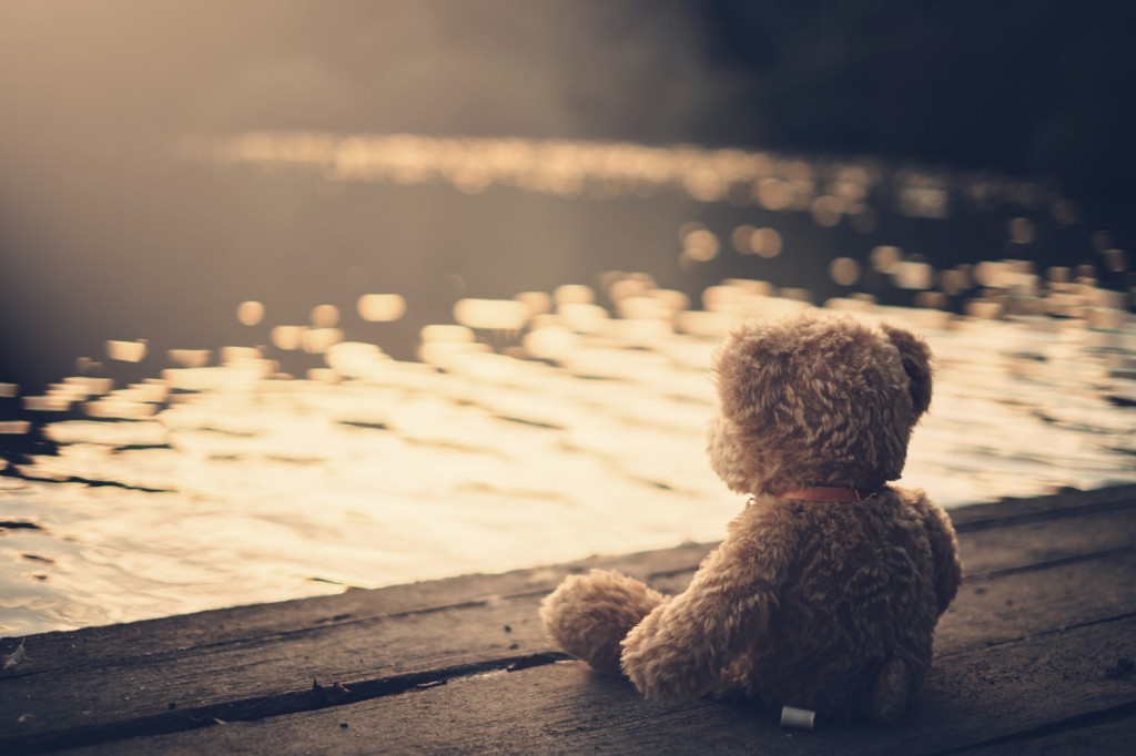 Teddy bear on a dock watching the sunset