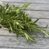 bound rosemary on wooden table