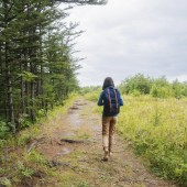 Hiker girl with backpack walking on footpath in summer forest, rear view