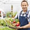 Man Holding Basket Of Fresh Vegetables
