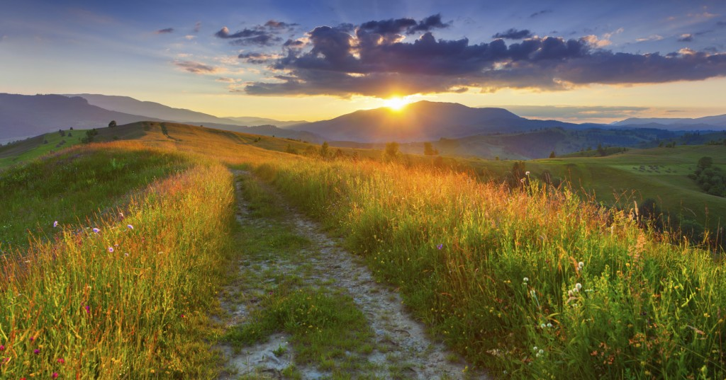 Panorama of the colorful summer evening in the mountains.