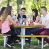 Group of teenagers picnic
