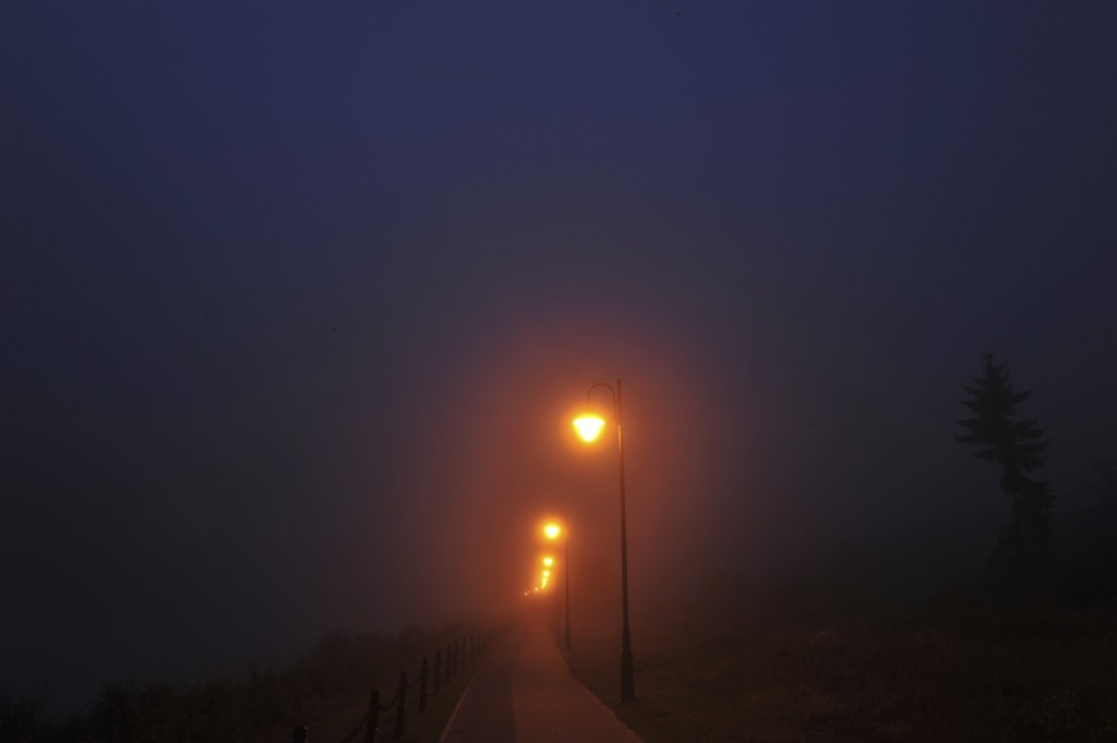 Dark and foggy street light lite road