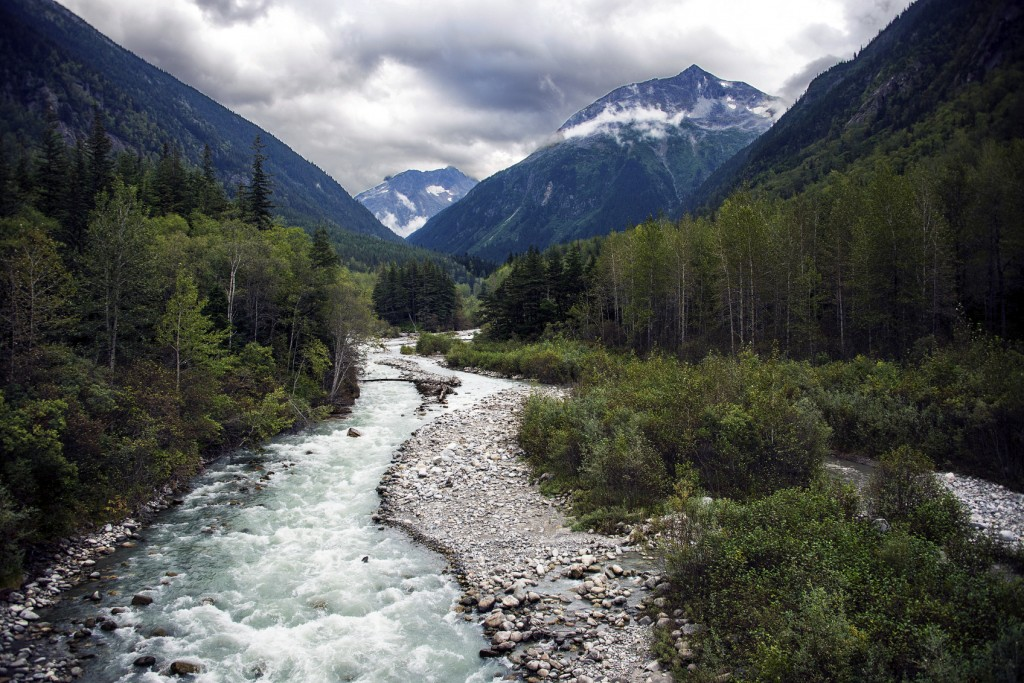 Alaska Landscape with Forests, Mountains and River