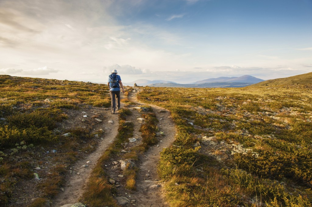 hiker with backpack traveling in Norway mountains Dovre