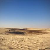 Qatar desert