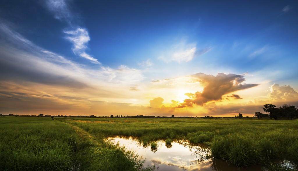 Sunset at rural scene