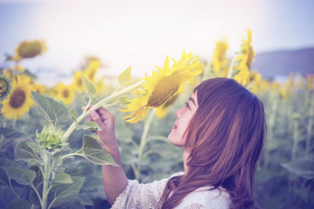 Beautiful woman enjoys blooming sunflower in the sunflowers field
