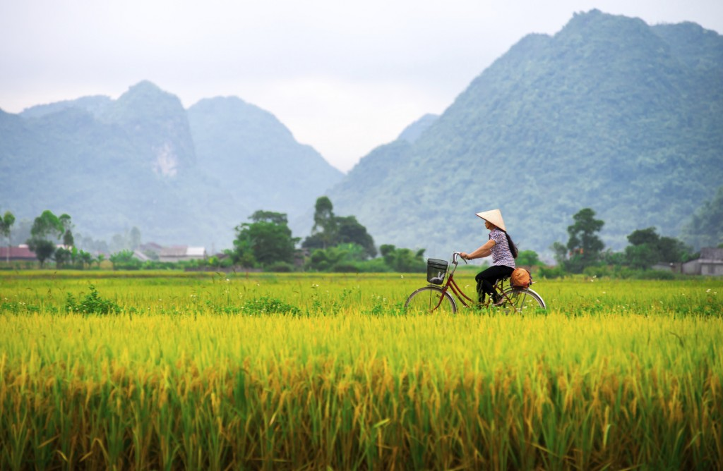 Vietnamese woman and her ride in a valley