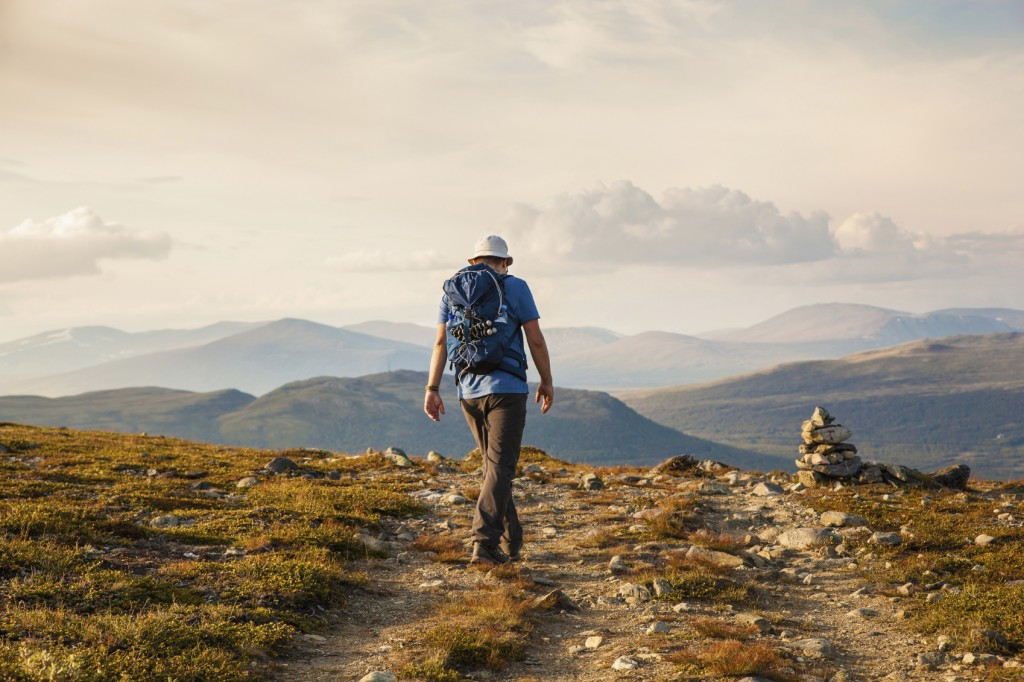 hiker with backpack travelling in Norway mountains Dovre