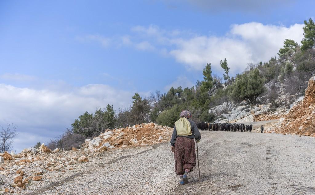 Women herding sheep.