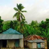 Maison de paysan haïtien et végétation