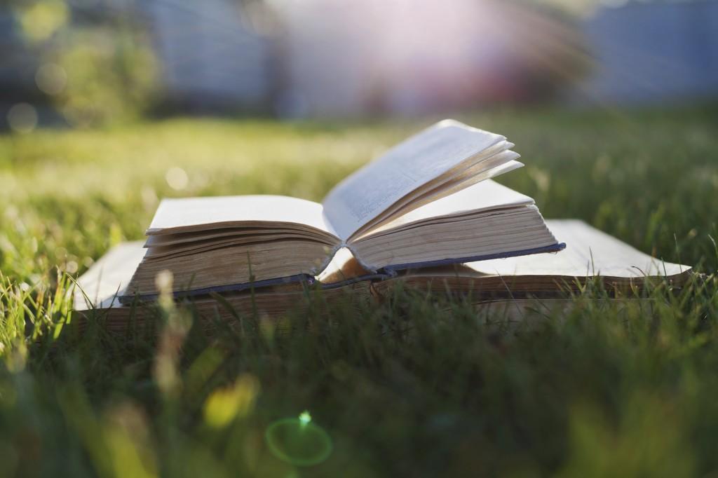 Open book on a green grass against beautiful sunset lights