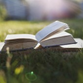 Open book on a green grass against beautiful sunset lights