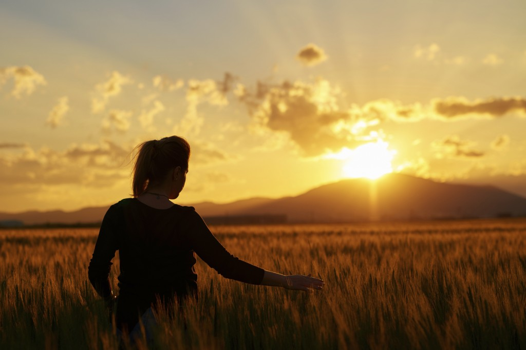 rear view of woman in wheat field feeling free and touching the nature, silhoette at sunset.