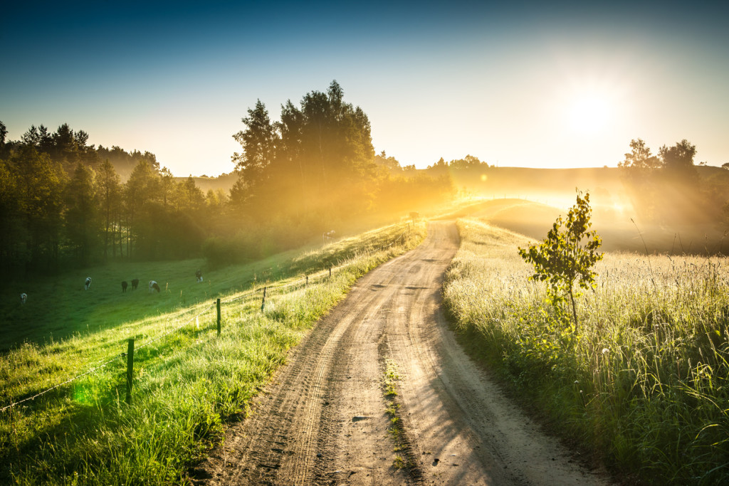 Morning Country Road through the Foggy Landscape - Colorful Sunrise