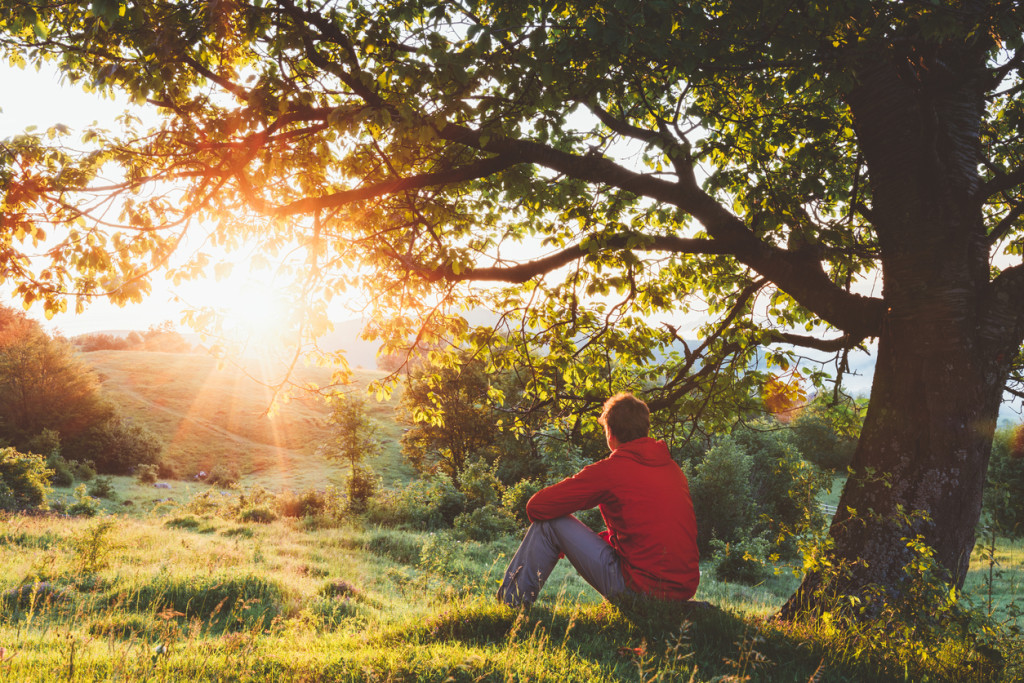 Man sitting outdoor under a tree and admiring the sunrise