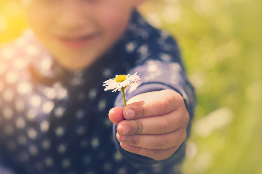 A little boy exploring and playing outside in the country and fields, smiling and holding a daisy.Focus on foreground.