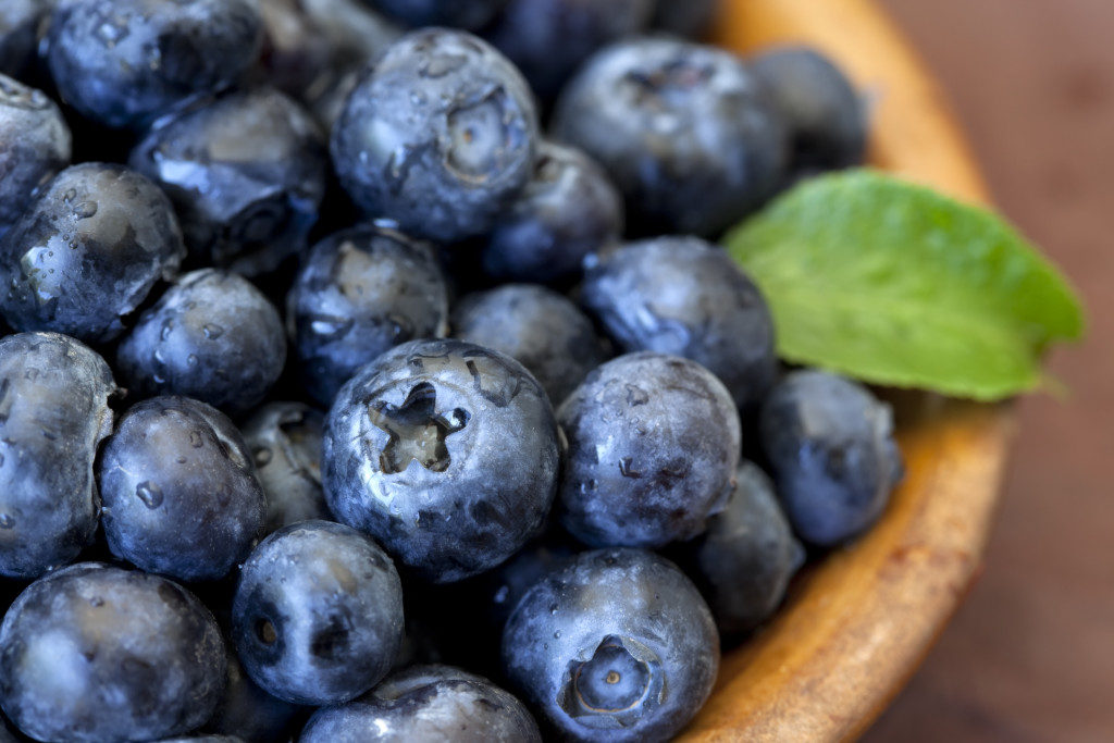 Fresh blueberries with green leaf accent in bowl