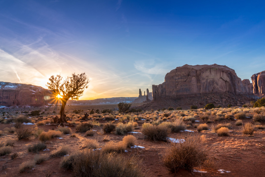 Setting sun glowing through a barren tree in the lowlands of Monument valley, northern Arizona.