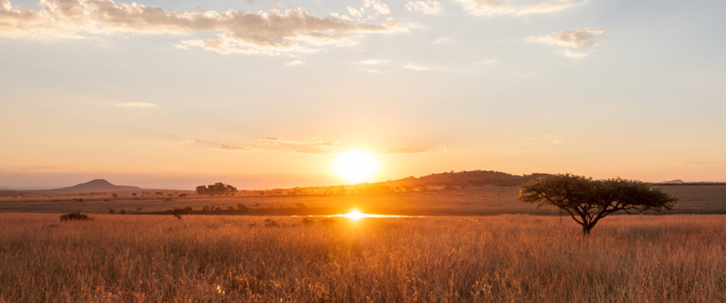 Sunset reflected in a waterhole on the plains of South Africa in Kwazulu Natal