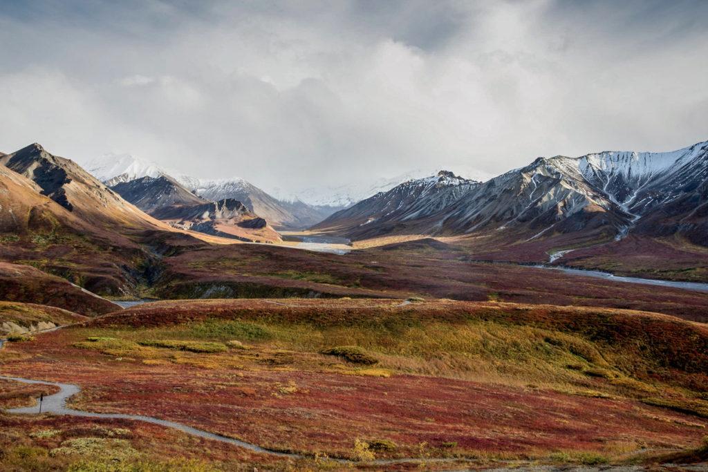 Autumn tundra in Alaska Range