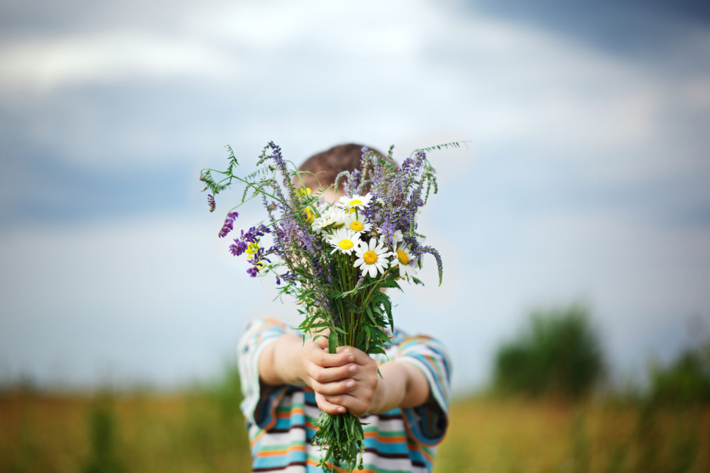 Little kid boy in meadow bouquet of flowers at the countryside.