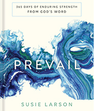 Prevail book cover