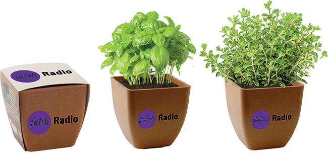 Faith Radio planters