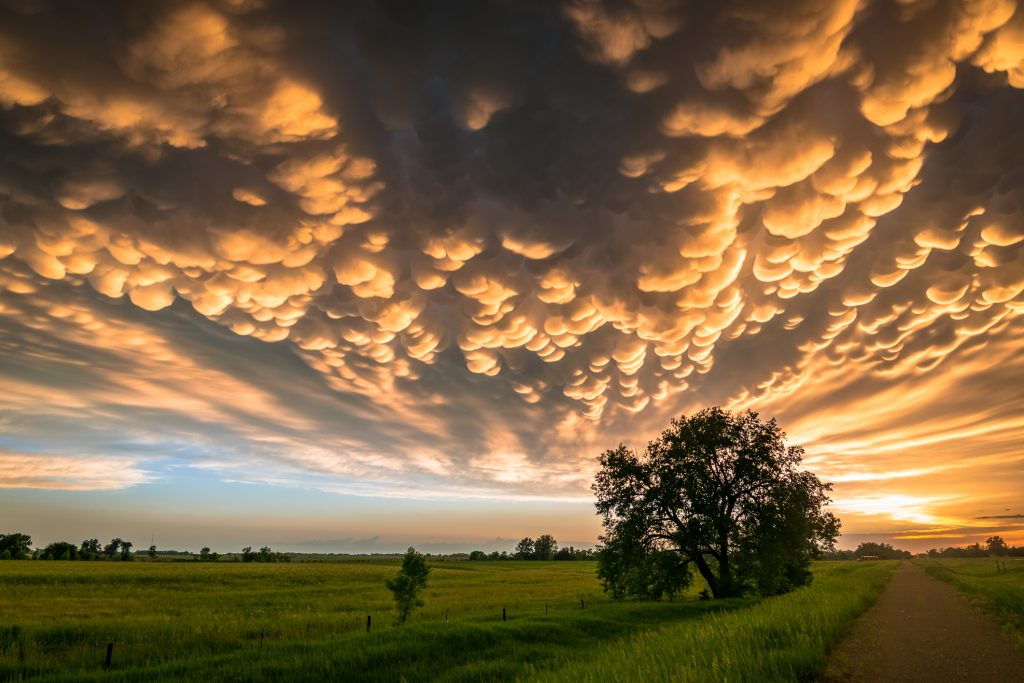 Beautiful evening scene of the Great Plains, USA at sunset. Photographed at the end of a stormchase in Nebraska.